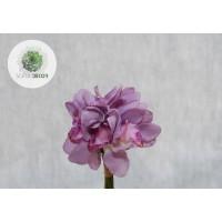 Orchidea kötegelt csokor x9