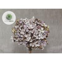 Hortenzia kötegelt csokor x3 lila