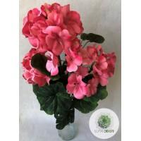Muskátli bokor x9 rózsaszín