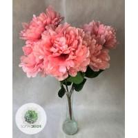 Pünkösdi rózsa csokor x5