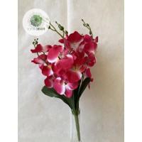 Orchidea csokor x5 (TÖBB SZÍNBEN!)