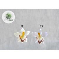 Orchidea fej (db ár) CSAK CSOMAGRA RENDELHETŐ!