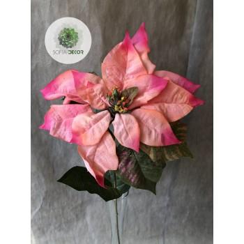 Mikulásvirág rózsaszín 70cm