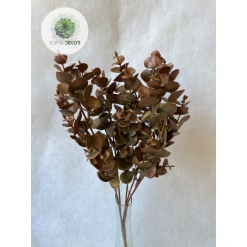 Eukalyptus bokor bronz