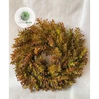 Pozsgás koszorú barna-zöld D35cm