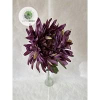 Krizantém lila