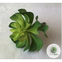Kőrózsa 11*15cm zöld