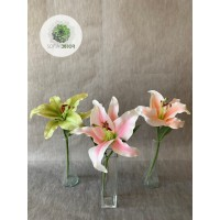 Liliom szálas zöld, rózsaszín, barack