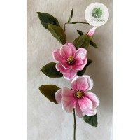 Magnólia krém, rózsaszín 85cm