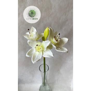 Orchidea 55cm