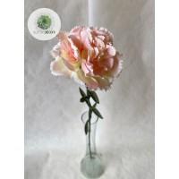 Szegfű barack-rózsaszín 66cm