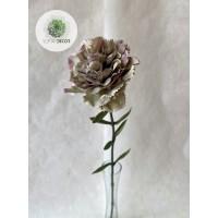 Szegfű szürke-lila 66cm