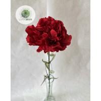 Szegfű piros 66cm