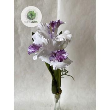 Orchidea beültethetős
