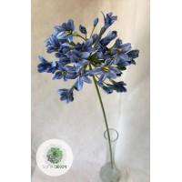 Agapanthus 72cm kék, fehér