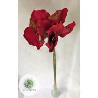 Amarillis piros, glitteres 75cm