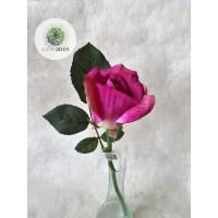 Rózsa szálas lila
