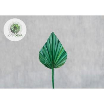Pálmalevél zöld