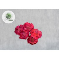 Pálma virág kicsi pink