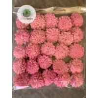 Ming cínea 6cm rózsaszín
