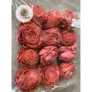 Ming rózsa 8cm púder rózsaszín