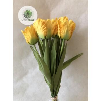 Papagáj tulipán kötegelt csokor x10 (TÖBB SZÍNBEN!)